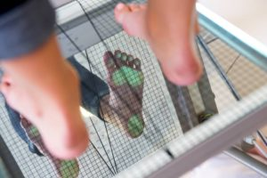 Dobierz wkładki powykonaniu badania stóp